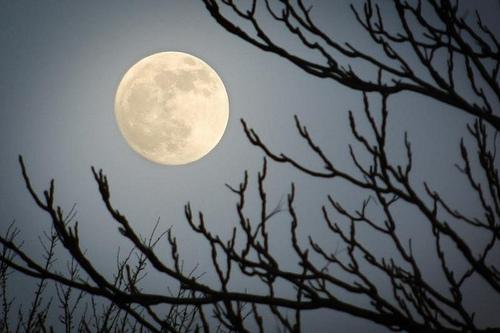 Moon Salutation – Chandra Namaskar – and the Year of the Supermoon
